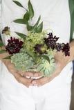 Flores y controles del ramo de la hoja Foto de archivo libre de regalías
