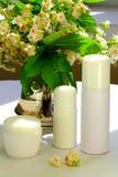 Flores y cosas del árbol de castaña para el balneario Fotografía de archivo libre de regalías