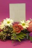 Flores y espacio en blanco Fotos de archivo libres de regalías