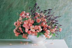 Flores y florero foto de archivo libre de regalías