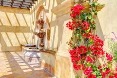 Flores y fuente sobre los detalles españoles de la pared. Imagenes de archivo