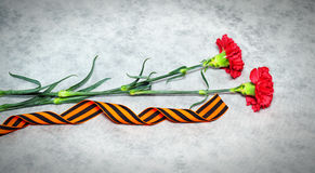 Flores y George Ribbon del clavel Imágenes de archivo libres de regalías