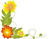 Flores y hojas stock de ilustración