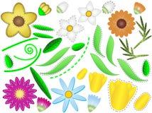 Flores y hojas del vector EPS 8 para diseñar sus los propios Foto de archivo libre de regalías