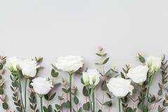 Flores y hojas en colores pastel hermosas del eucalipto en la opinión de sobremesa gris Frontera floral rosada estilo plano de la fotografía de archivo libre de regalías