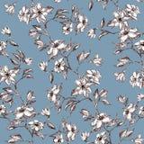 Flores y hojas en la rama, mano gráfica dibujada - modelo inconsútil con el flor de la manzana en azul sucio imágenes de archivo libres de regalías