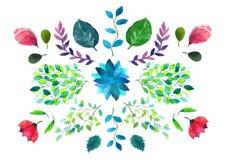 Flores y hojas Ilustración de la acuarela Imagen de archivo
