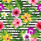 Flores y hojas tropicales en fondo rayado inconsútil Vector libre illustration