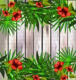 Flores y hojas tropicales sobre la madera, ejemplo brillante stock de ilustración
