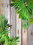 Flores y hojas tropicales y mariposa hermosa sobre la madera Imágenes de archivo libres de regalías