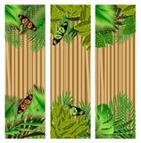 Flores y hojas tropicales y mariposa hermosa sobre la madera, b libre illustration
