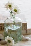 Flores y libros Foto de archivo