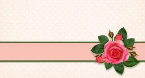 Flores y marco de Rose Imagenes de archivo