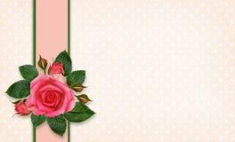 Flores y marco de Rose Fotografía de archivo libre de regalías
