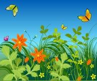 Flores y mariposa Imágenes de archivo libres de regalías