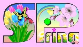 Flores y mariposa hermosas del paisaje de la primavera de Japón ilustración del vector