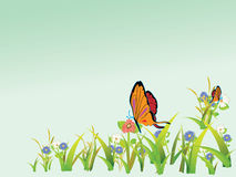 Flores y mariposas Fotos de archivo libres de regalías