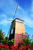 Flores y molinoes de viento Fotografía de archivo libre de regalías
