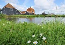 Flores y molinoes de viento de Holand Foto de archivo