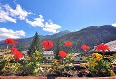 Flores y montañas Imagen de archivo