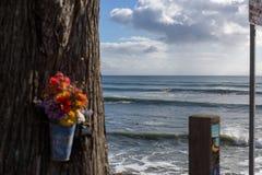 Flores y ondas Imágenes de archivo libres de regalías