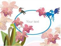 Flores y pájaros Fotografía de archivo libre de regalías