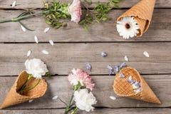 Flores y pétalos hermosos del flor en conos de la oblea en fondo de madera Imagen de archivo libre de regalías