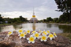 Flores y pagoda de Nadoon Foto de archivo libre de regalías