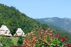 Flores y paisaje de la montaña de las cabañas Imagenes de archivo