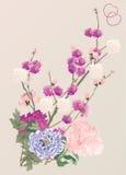 Flores y peony del cerezo Fotos de archivo libres de regalías