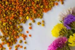 Flores y polen de la flor en un fondo blanco Fotos de archivo