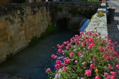 Flores y puente al sol Imagen de archivo