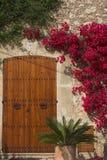 Flores y puerta Imágenes de archivo libres de regalías
