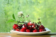 Flores y ramitas de la cereza en una madera Imagen de archivo