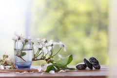 Flores y ramitas de la cereza en una madera Fotografía de archivo