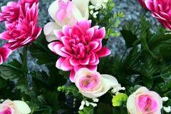 Flores y rosas rosadas, fondo floral romántico Imágenes de archivo libres de regalías