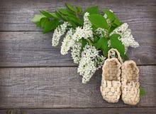 flores y sandalias del árbol de la Pájaro-cereza hechas de corteza Foto de archivo