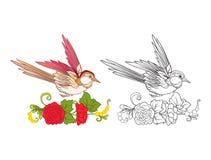 Flores y trago Sistema del dibujo coloreado de la muestra y de esquema Fotografía de archivo