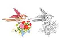 Flores y trago Sistema del dibujo coloreado de la muestra y de esquema Fotos de archivo libres de regalías