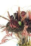 Flores y trigo secados Fotografía de archivo libre de regalías
