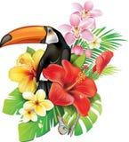 Flores y tucán tropicales Imágenes de archivo libres de regalías
