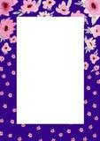 Floresce a composi??o Quadro violeta retangular feito de flores e das folhas cor-de-rosa com espaço para o texto ilustração stock