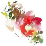 Floresce a ilustração da aquarela Imagem de Stock