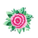 Floresce a ilustra??o da aquarela Ajuste das flores cor-de-rosa vermelhas e das folhas verdes no fundo branco imagens de stock royalty free
