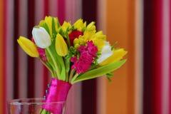 Floresce o close-up Imagens de Stock