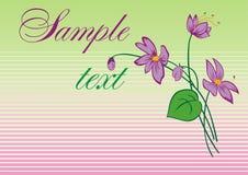 Floresce o lilac Fotos de Stock