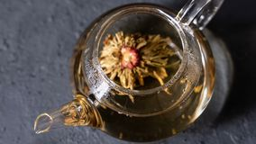 Florescence del té floreciente verde metrajes