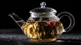 Florescence del té floreciente verde almacen de video
