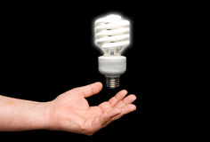 Florescent Light Bulb Royalty Free Stock Images
