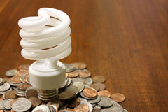 Florescent Light Bulb in Money. A conceptual photo of how florescent light bulb can save you cash Royalty Free Stock Photography